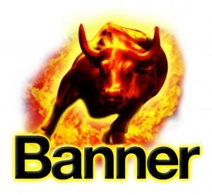 Banner Büffel